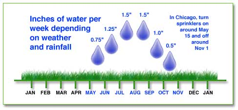 Watering chart